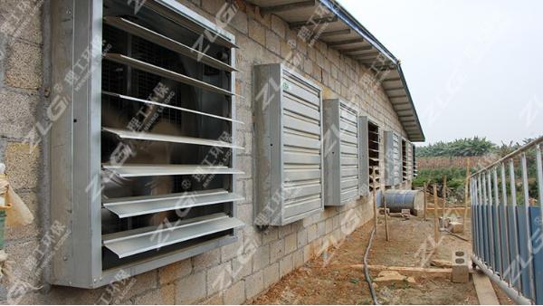 养鸽场通风降温负压风机,广西风机厂家