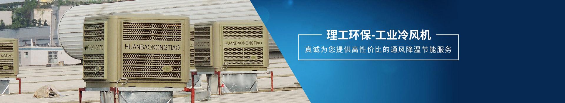 理工工贸-工业冷风机