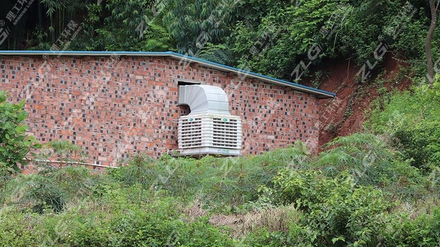 母猪养殖场安装理工冷风机通风降温
