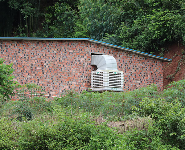 猪场水帘风机降温厂家