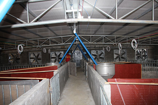 养猪场降温设备