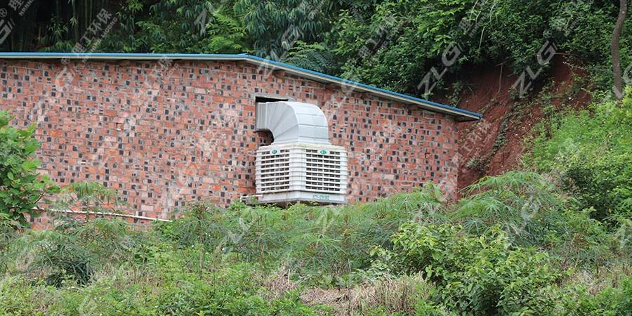 养鸡场用冷风机降温,环保空调厂家