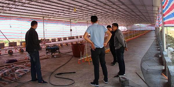 养鸡场基地安装负压风机水帘墙用[ZLG理工]品质优,效果好
