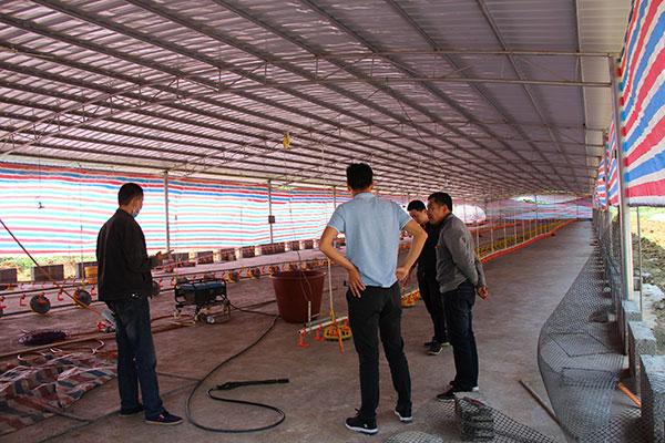 ZLG理工安装马山县肉鸡养殖场负压风机水帘墙