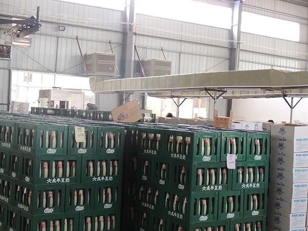 食品工业用的冷风机效果如何