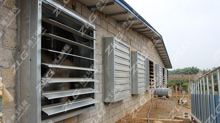 养猪场水帘负压风机降温系统安装案例
