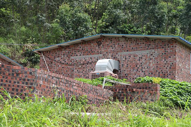 养猪场可以安装冷风机,排出室内氨气,通风降温